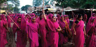 Pink Sari Revolution Book Cover