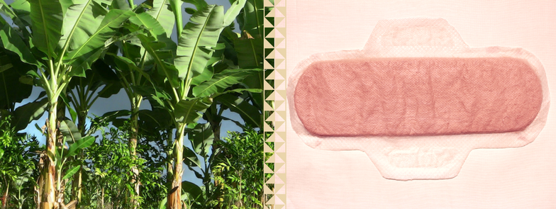 From Plastic To Banana Fibre: How Biodegradable Pads Were Born | #ThePadEffect