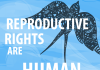 reproductive rights are human rights