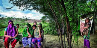 denotified tribes