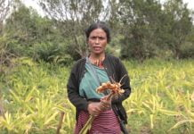 Meghalaya Woman Trinity Saioo Receives Padma Shri For Turmeric Farming