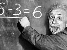 Who's The Most Genius Of All — My Biased Understanding Of Human Intelligence